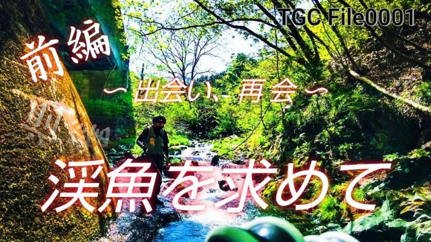 岩手県渓流遠征~パート2